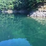 超クリアウォーターに苦戦!合川ダム月例釣行8月