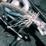 晴天無風のクリアウォーターを巻いて釣る!ブレードジグの巻