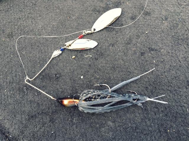 gougawadam-bass02