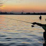 美しいウェーディングの風景写真:東京湾シーバス