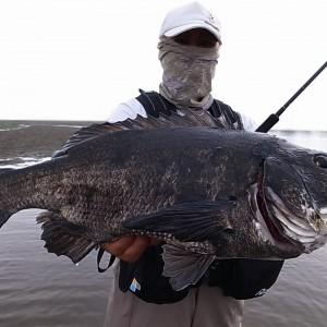 釣りって、、、やっぱり楽しい!! 黒鯛釣行@千葉