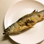 有明海の固有種「ハクラ」こと有明海産スズキを食べてみました!!