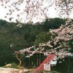 LOG.23 春の亀山ダム!春バス開幕!?
