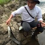 河が眠らないから私の釣魚大全2015ざっくりまとめ
