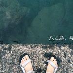 夏の八丈島で堤防釣り