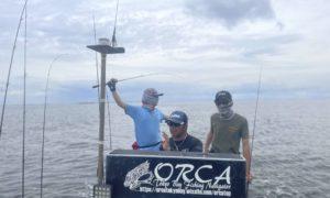 【木更津ORCAのチヌトップ】2021年 実釣レポート