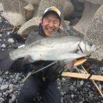 平戸でヤヒロなヒラスズキ釣りに挑戦してきました!釣ったヒラスズキは5種類の料理に変身(*´艸`*)