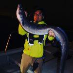 東京湾のシン・怪魚、クロアナゴ釣りに挑戦!