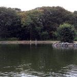 10月22日 ベリーパーク王禅寺に久々朝練。