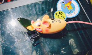 【釣りよかルアー】相模湖の大会下見ついでにチリチリライザーで釣ってみた!