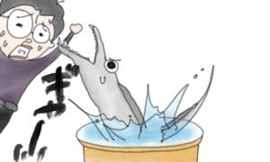 【タチウオの脱走防止】タチウオの血抜きを安全かつスムーズに行う簡単すぎるハック!?