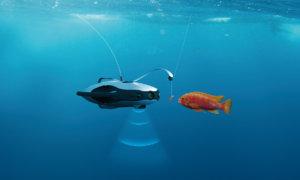 今年の釣りはアンコウ型Droneで
